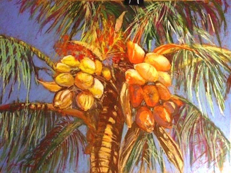 Coconut Palmlr